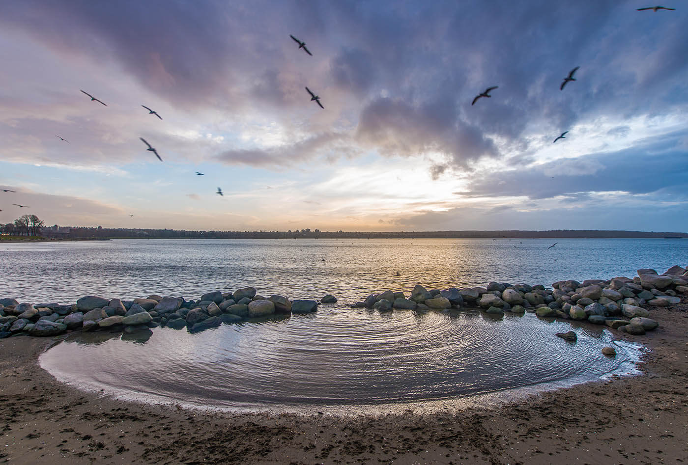 A beautiful sunset of purples and blues with birds flying over a small tide pool on a beach